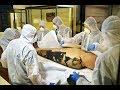 Las momias del MAN -