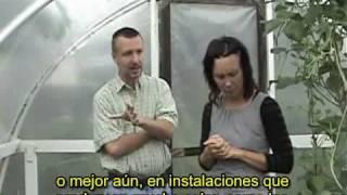 Huertas perennes con Eric Toensmeier