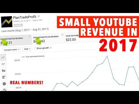 Small YouTube Channel Revenue in 2017! HIGH CPM!!!