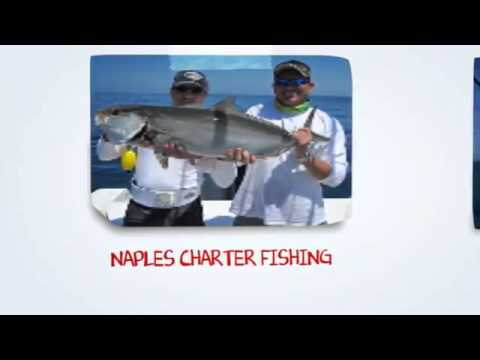 Charter Fishing  Naples FL | Inshore Fishing, Naples Fl,  Offshore Charter Fishing  in Naples