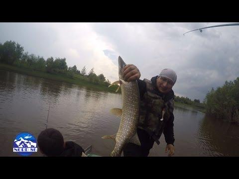 хорошая рыбалка в сургуте