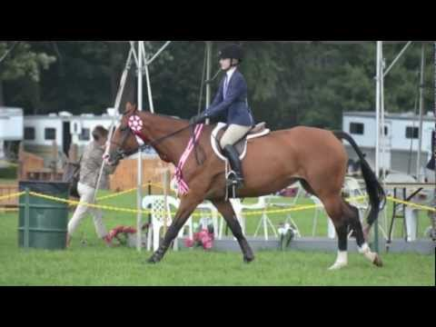most amazing horse in the world♥ [CHJA]