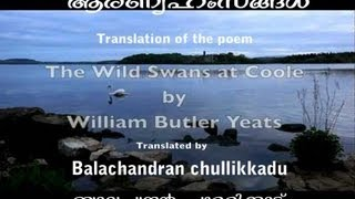 Aaranyahamsangal-Balachandran chullikkadu  (The Wild  Swans Of Coole