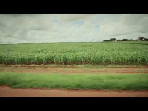 Confiança GAP - Episódio 4 | Fazenda Sereno