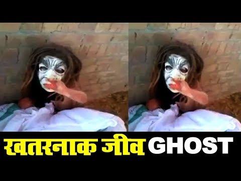Scary GHOST-like Creature caught in Punjab  India डरावना जीव को लोगो ने पकड़ा