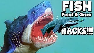 Feed and Grow Fish Gameplay German - MEGALODON selbst spielen!