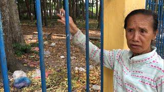 Video thứ 2 | Cô nói về  đàn khỉ tại nội ô Toà Thánh Tây Ninh | Monkeys in Toa Thanh Tay Ninh