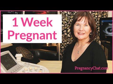 1 Week Pregnant By Pregnancychat pregchat video