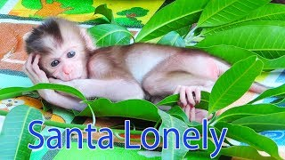 Orphan Baby Santa Feeling Lonely After Leave From Mama Sandy / Spend Times To Take care Santa