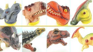 4 Giant Heads Of Dinosaurs! Learn Names of Dinosaurs with T Rex, Triceratops Ankylosaurus! Dino Toy