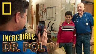 Make a Wish: A Day With Dr. Pol | The Incredible Dr. Pol
