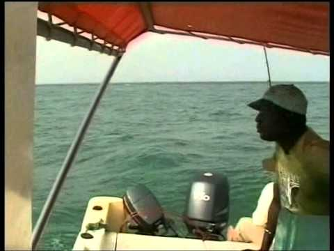 Fishing Guinea Bissau 2