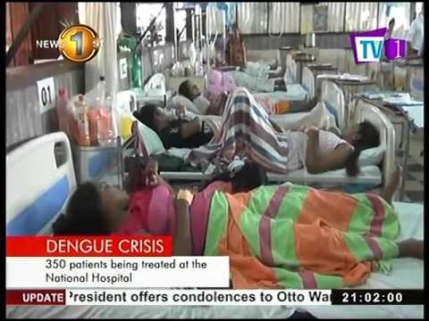 dengue crisis most h|eng