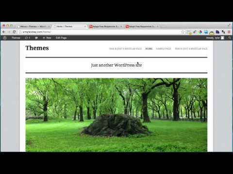 Understanding WordPress Themes