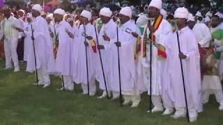 Ethiopan Ortodox Tewahido Wereb