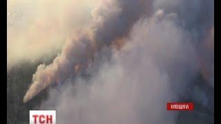 Рятувальники намагаються погасити чорнобильські ліси та торфовища - (видео)