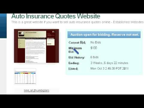 Preview Auto Insurance Quotes Website