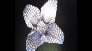Origami Flower By Soren (time Laps)
