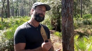 Survival 101: Making Food from Pine Trees