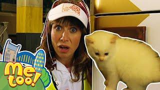 Me Too! - Bobby's Kitten   Full Episode   TV Show for Kids