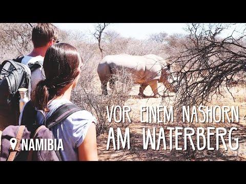 Waterberg & Nashörner • Namibia • Weltreise Vlog #152