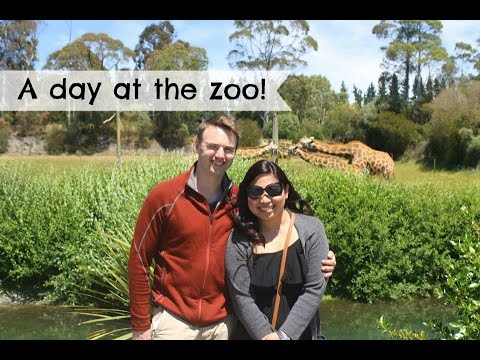 Orana wildlife park adventure-christchurch