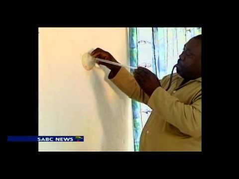 Malaria outbreak hit Mpumalanga province