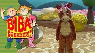Bibaboerderij - 080 - Grote Pony