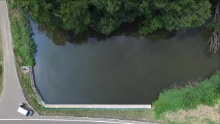 伊達市の沼シリーズ 梁川町二野袋 庭渡神社の向かいの池