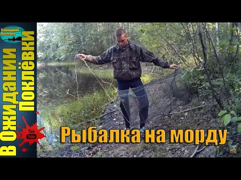 способы ловли мордой
