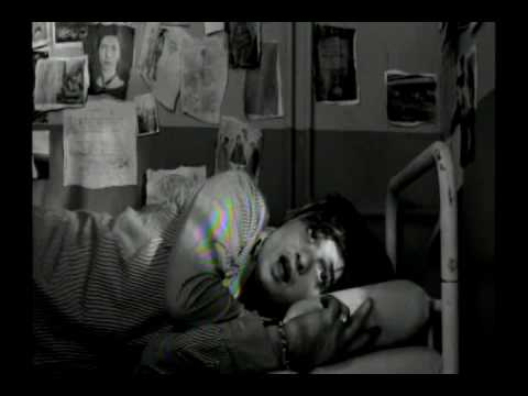 Pete Doherty - Broken Love Song