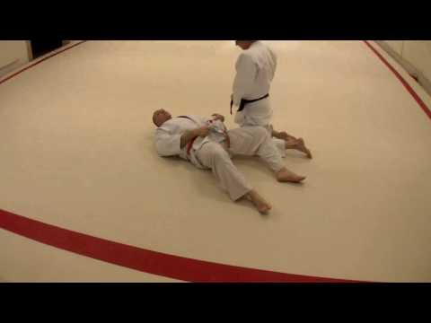 Judo Grappling- YokoshihoGatame and Escape. Image 1