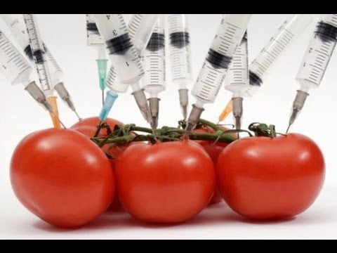 Genetically Modified Food Label Initiative Failing - Why?