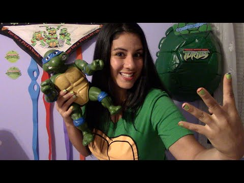 Let's Talk Turtles!