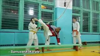 11. Karate training - 2016