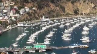 Avalon Harbor- Catalina Island