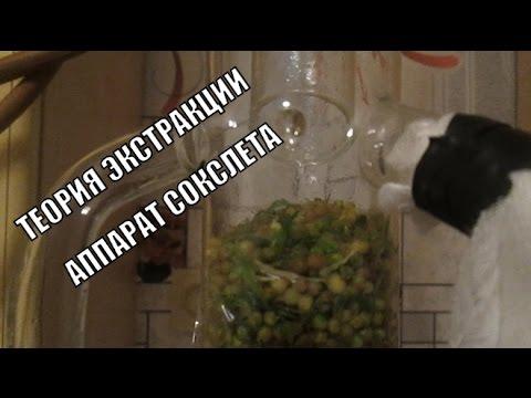Экстракция масла в домашних условиях