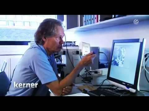 Die Wahrheit zum 11. September? | Fakten bei Johannes B. Kerner (01.09.2011)