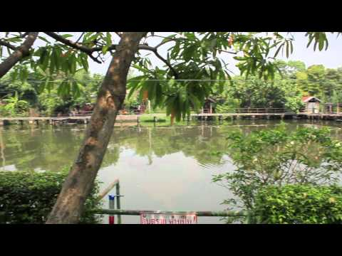 4H Lifestyle: Bangkok Apartment