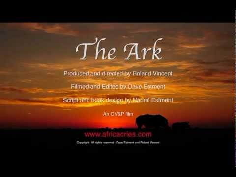 Rhino Poaching - The Ark - A Sanctuary For Endangered Species In Africa