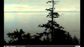 video Hornby Island eagle nest and territory cam - Hornby Eagle Group Projects Society.