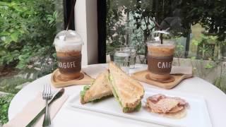 Best Cafe in Bangkok: 5 Must Visit Cafes!
