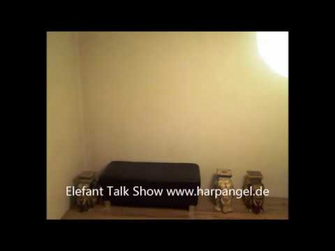 Elefant Talk Show * On Air * www harpangel de
