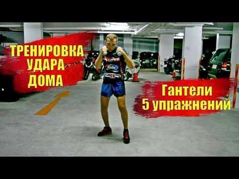 Как увеличить силу и скорость удара? 5 базовых упражнений с гантельками, тренировка дома