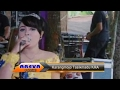 Download Lagu Areva Kereto Jowo Live Tepus