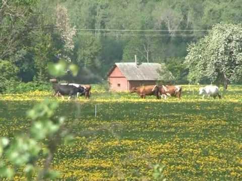 Европейское село