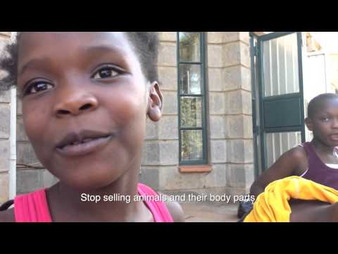 IFAW – Youth Voices for World Wildlife Day 2015
