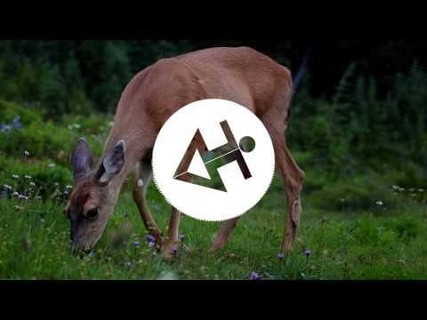 Smash Mouth - All Star (Teddy Cream & Christian Mimmo Remix)   Jumping Sounds
