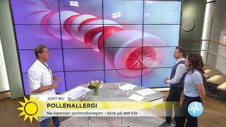 Pollenallergisk? - tänk på det här - Nyhetsmorgon (TV4)