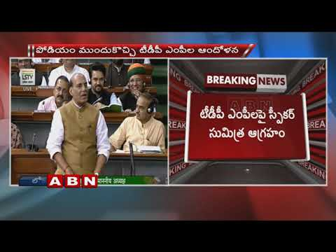 Rajnath Singh Makes Statement In Lok Sabha Condemning Mob Violence | ABN Telugu
